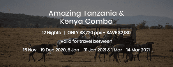 Amazing Tanzania and Kenya Combo Special