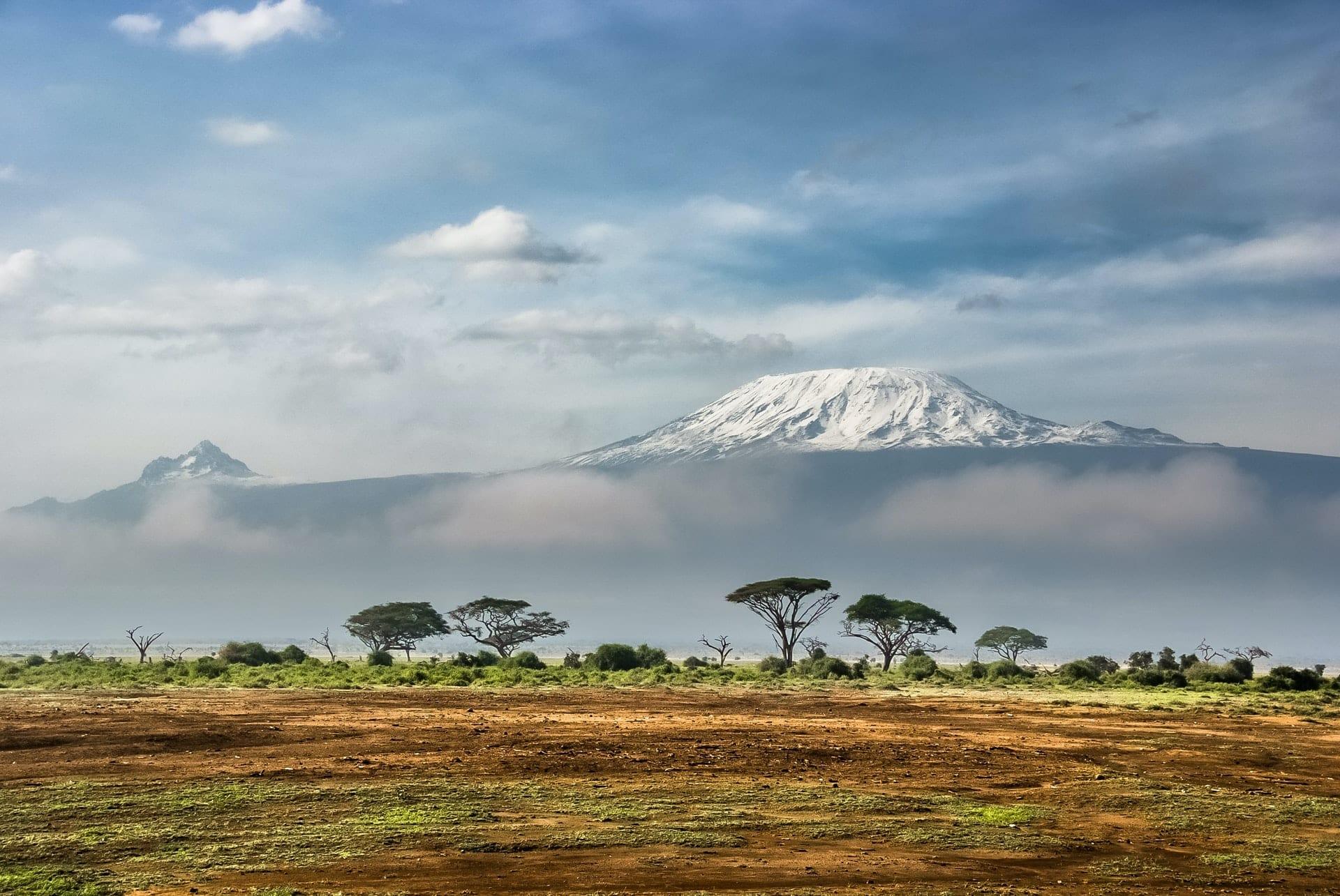 Amboseli National Park Kenya
