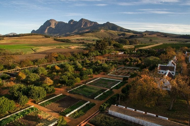 Babylonstoren the hidden gem of the winelands south africa