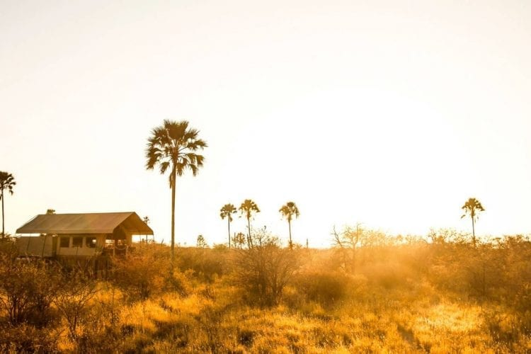 Camp Kalahari Botswana