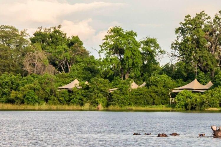 Duma Tau Botswana