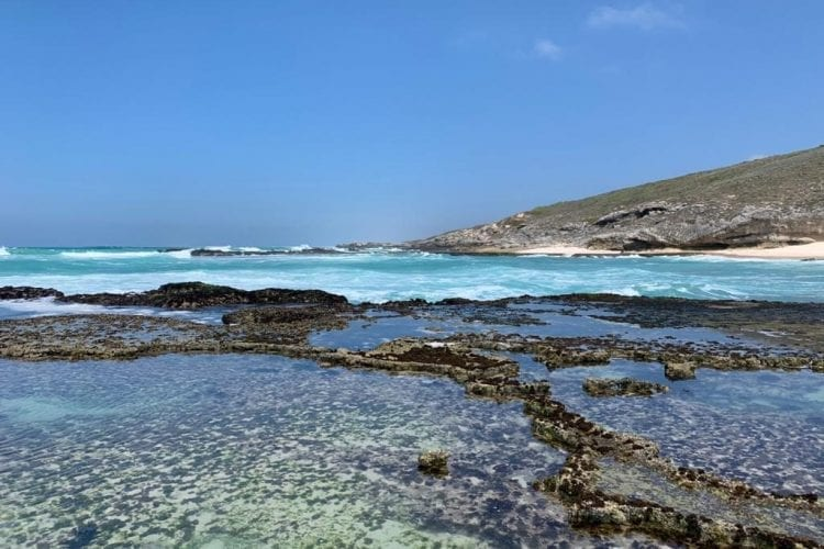 Endless Rock Pools and Sea Creatures at Lekkerwater Beach Lodge