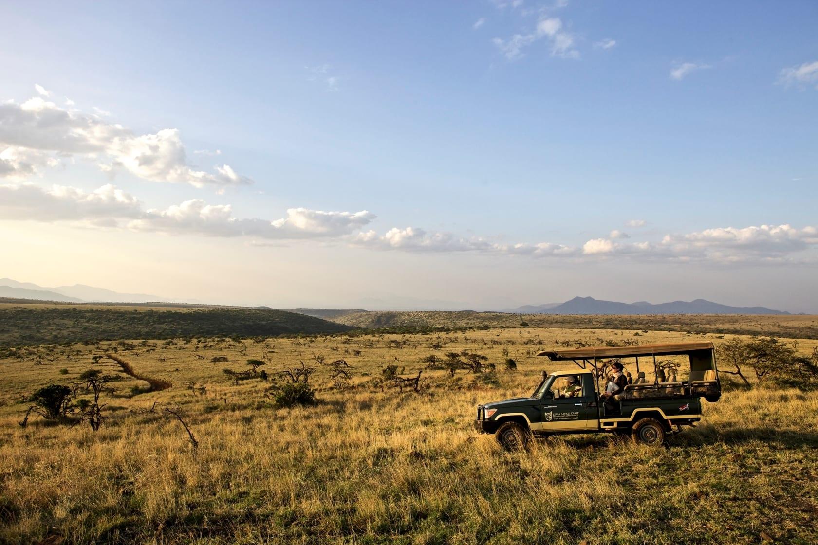 Game drives at Lewa Safari Camp