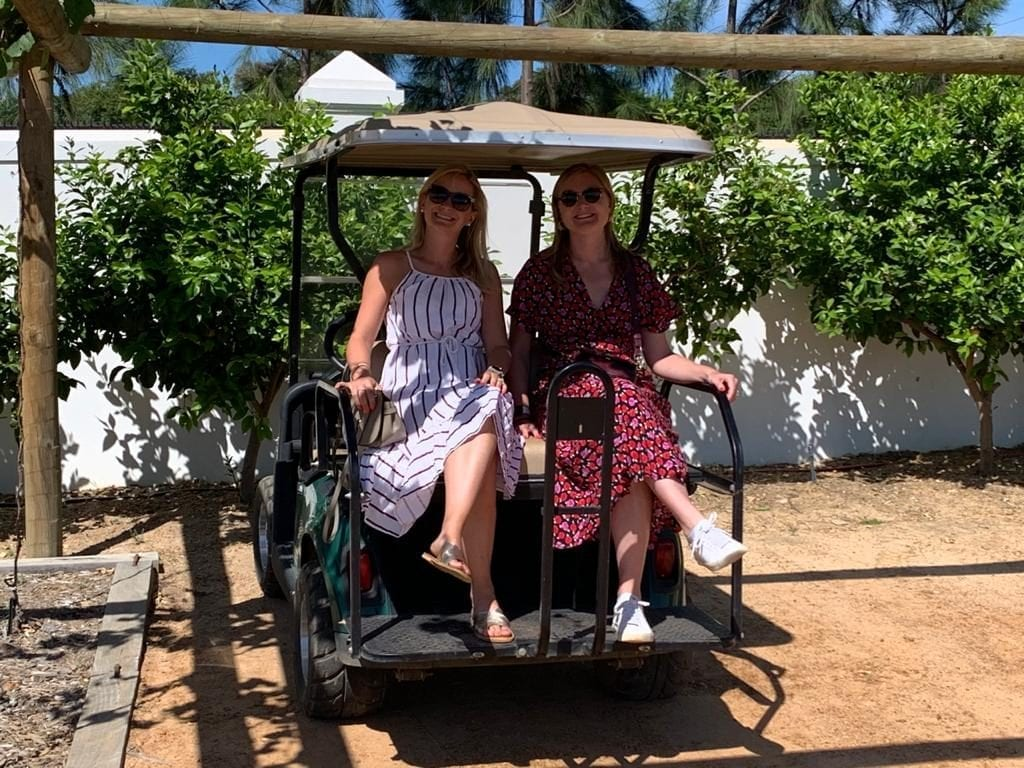 Golf Carts at Babylonstoren