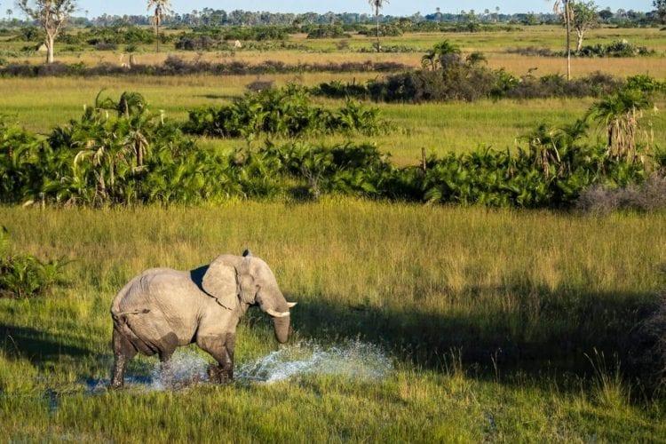 Jao Concession Botswana