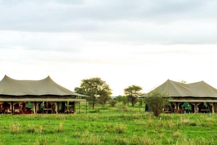 Kaskaz Mara Camp Tanzania