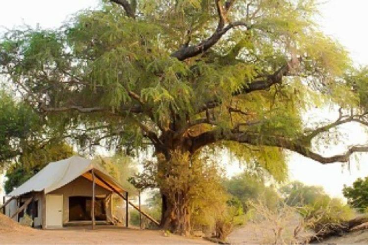 Little Vundu Camp Zimbabwe