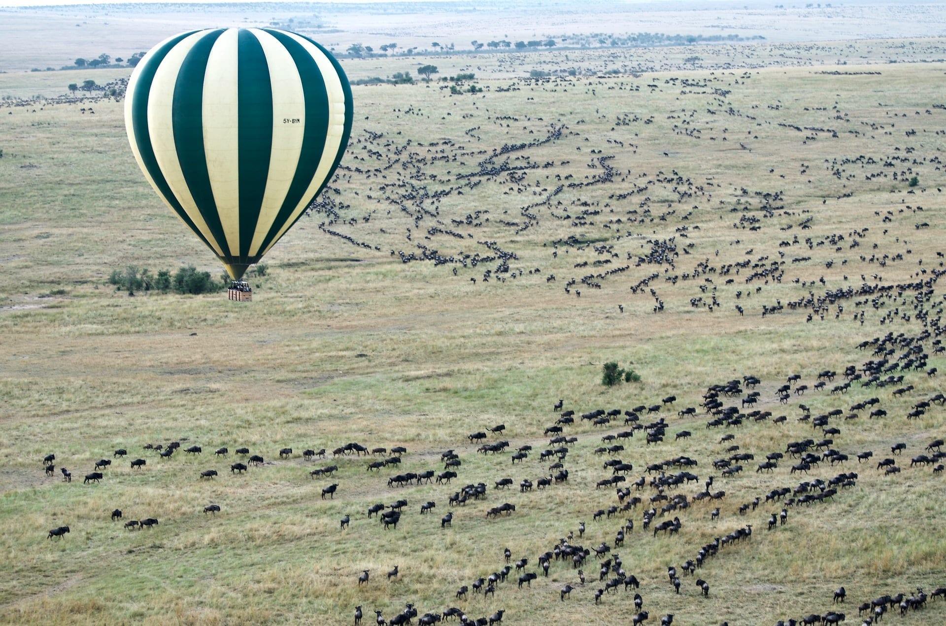 Masai Mara Kenya 1