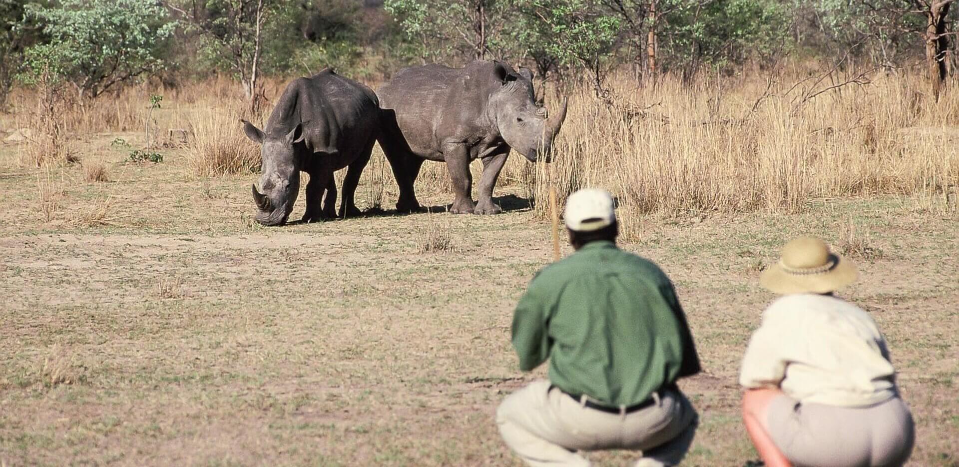 Matobo Hills National Park Zimbabwe