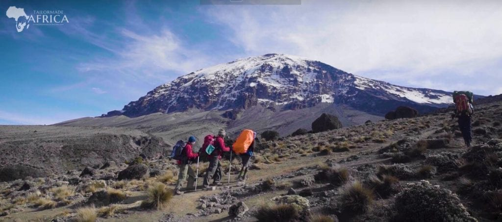 Mount Kilimanjaro and its Climate Zones