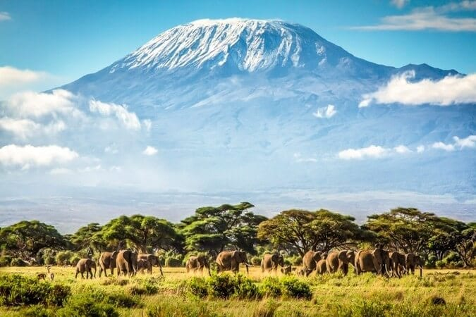 Mount Kilimanjaro Facts & History