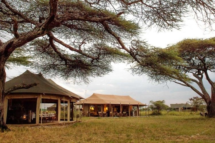Namiri Plains Tanzania