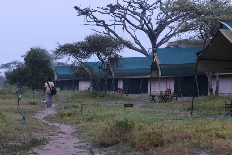 Nasikia Migration Camp North Tanzania