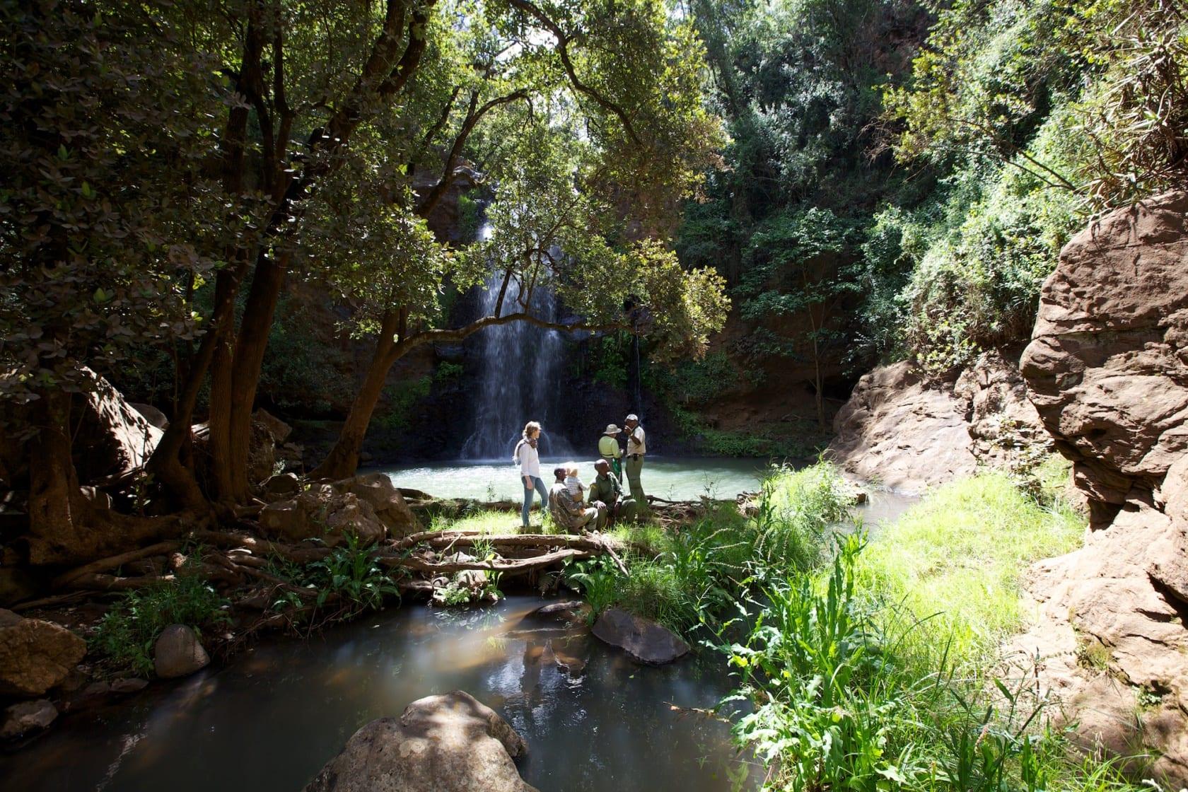 Ngare Ndare Forest Walk at Lewa Safari Camp