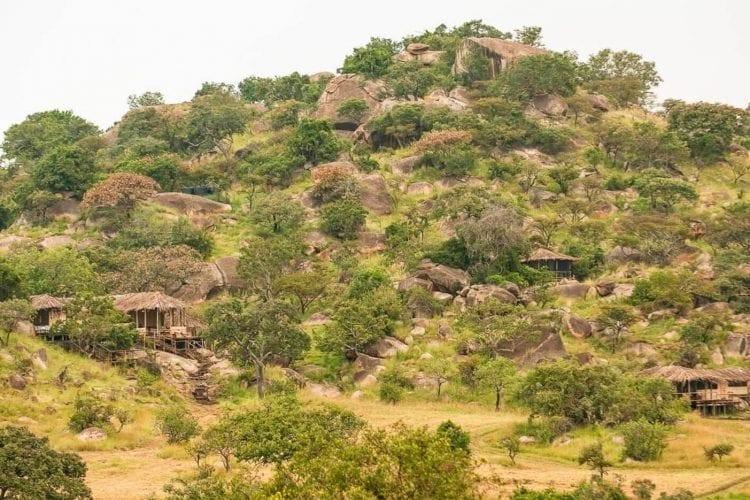 Nomad Lamai Tanzania