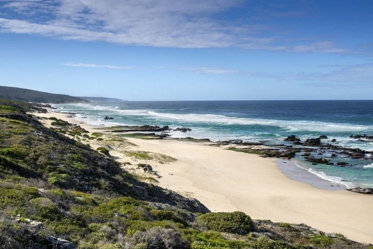 Prisitine beach areas in the De Hoop Nature Reserve