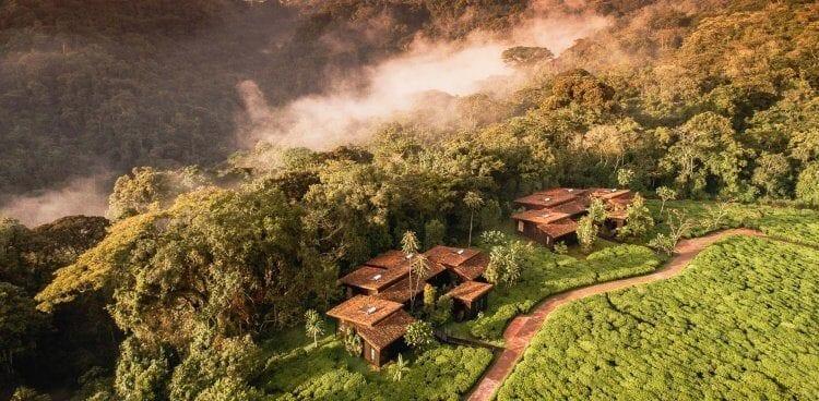 Re-opening of One&Only Nyungwe House Rwanda