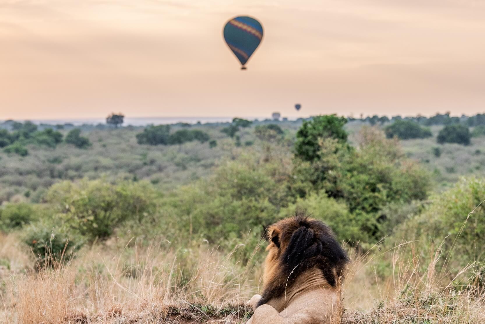 Romantic Hot-air ballooning at Encounter Mara