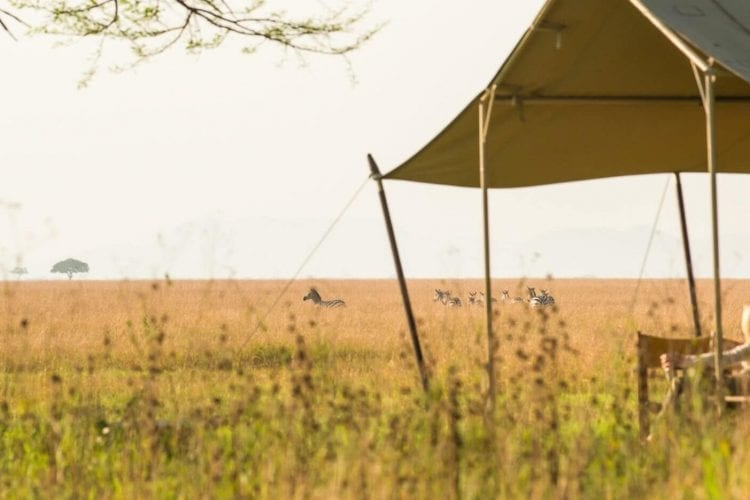 Serengeti Safari Camp North Tanzania