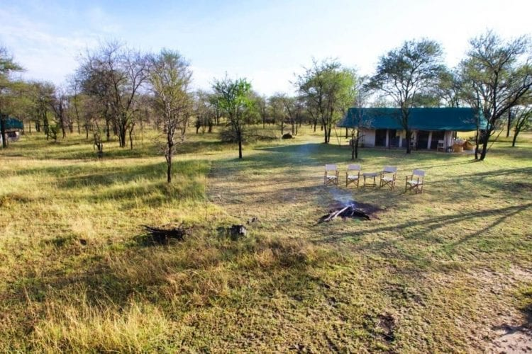 Serian Serengeti North Tanzania