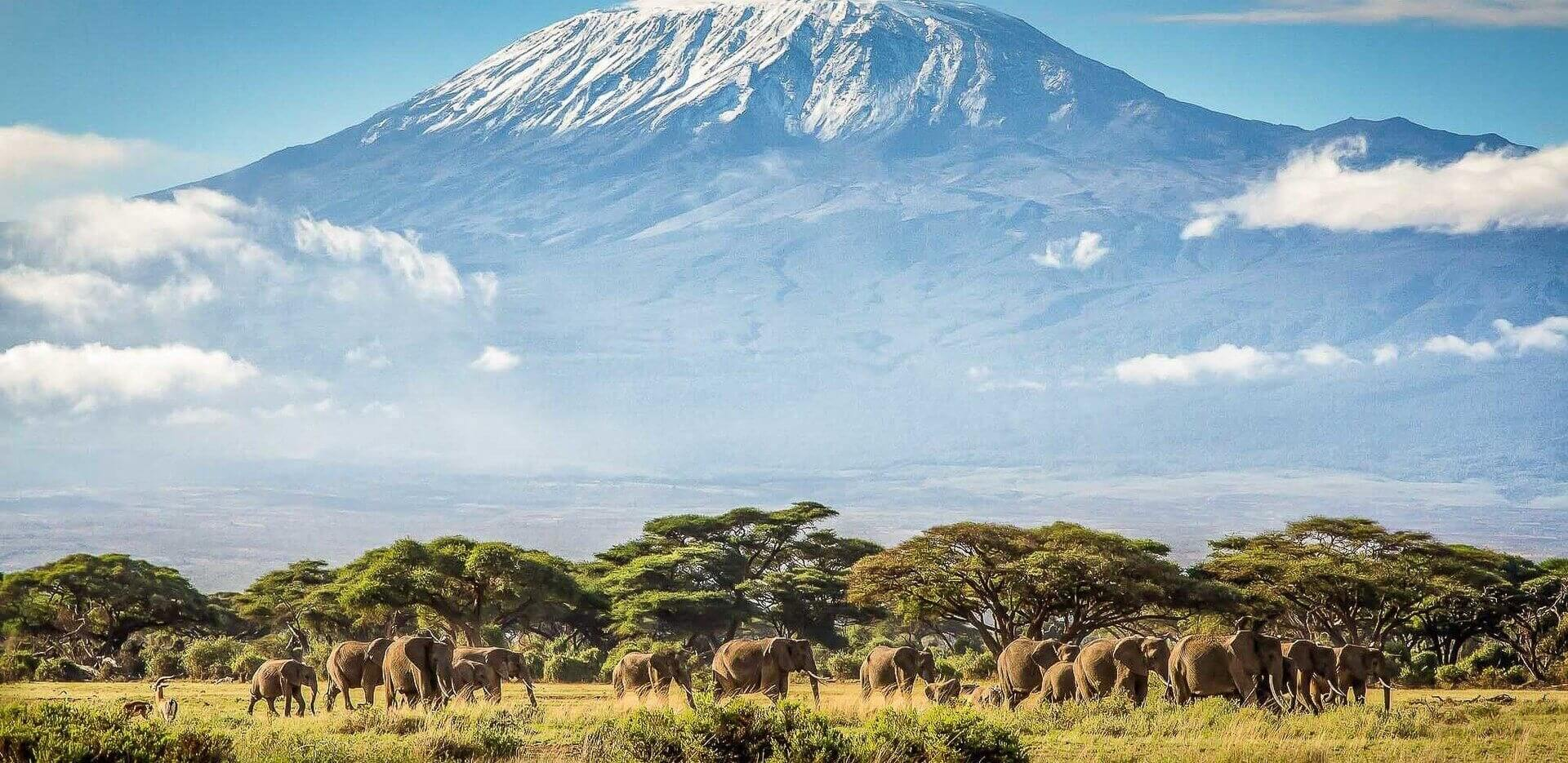 Tanzania with Mount Kilimanjaro in the background