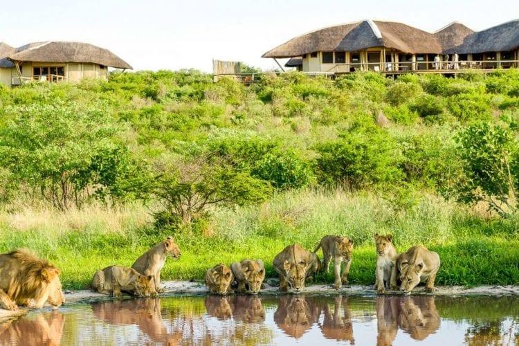 Tau Pan Camp Botswana