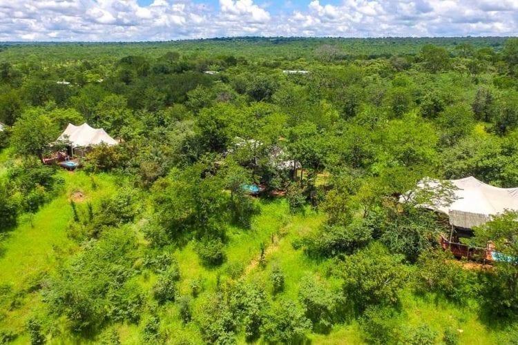 The Elephant Camp Zimbabwe