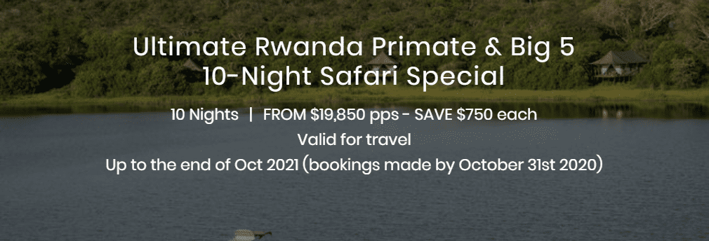 Ultimate Rwanda Primate and Big 5 10 Night Safari Special Display