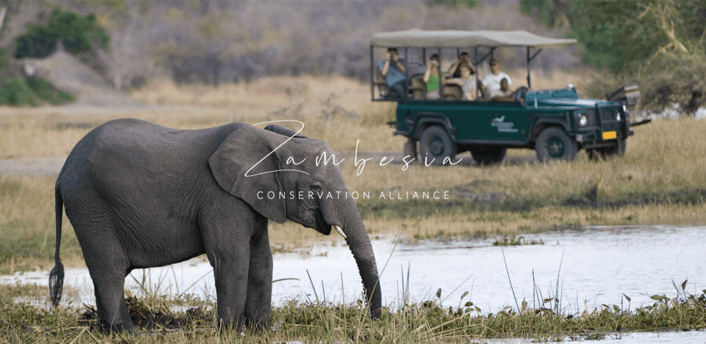 African tourism & conservation efforts