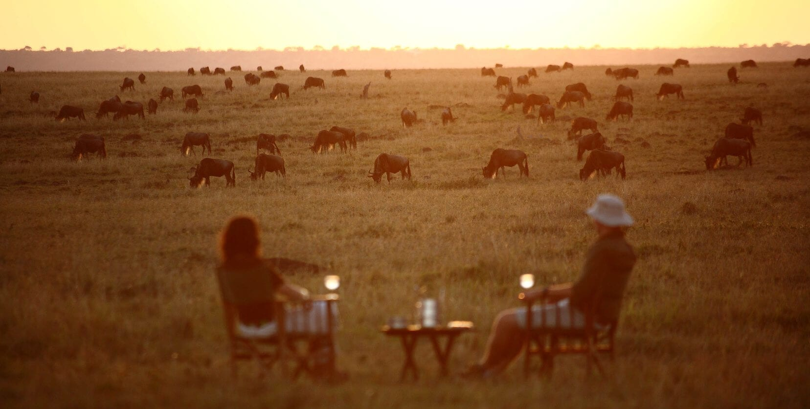 elephant_pepper_camp_-_sundowners_2