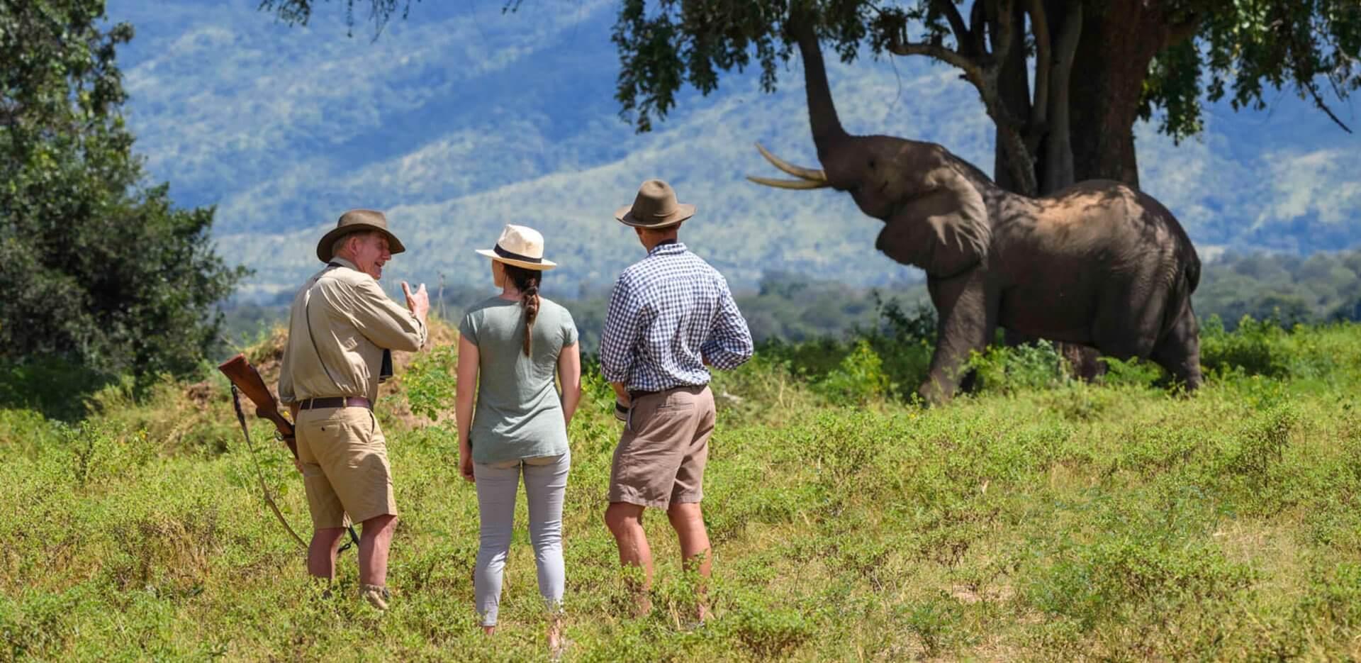 first-time-safari