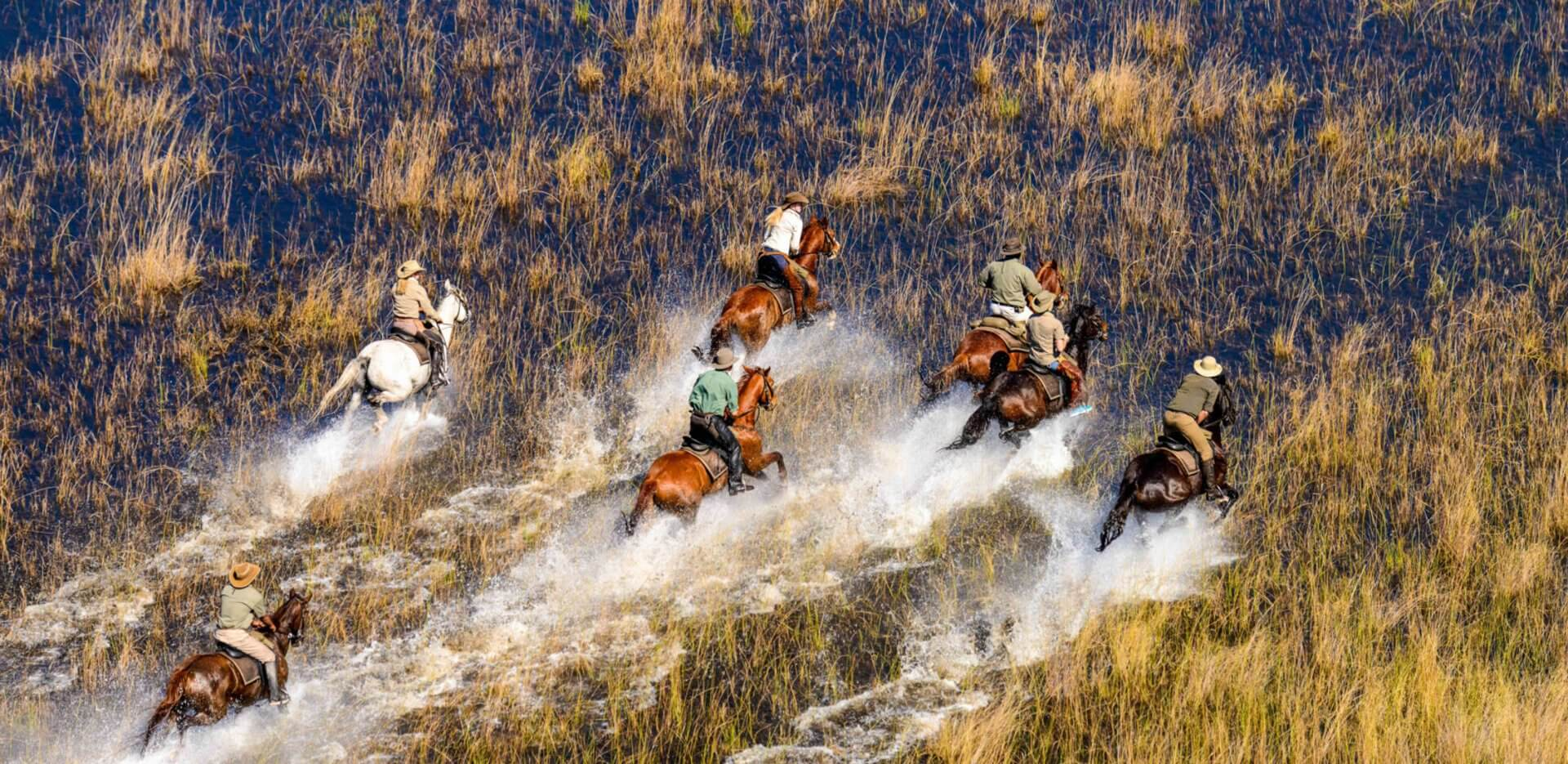 horseback-safari