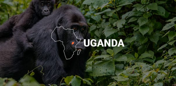 uganda-map-on-image